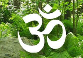Area E Hinduism